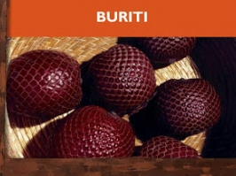 Essencia Buriti Naturaa 100ml